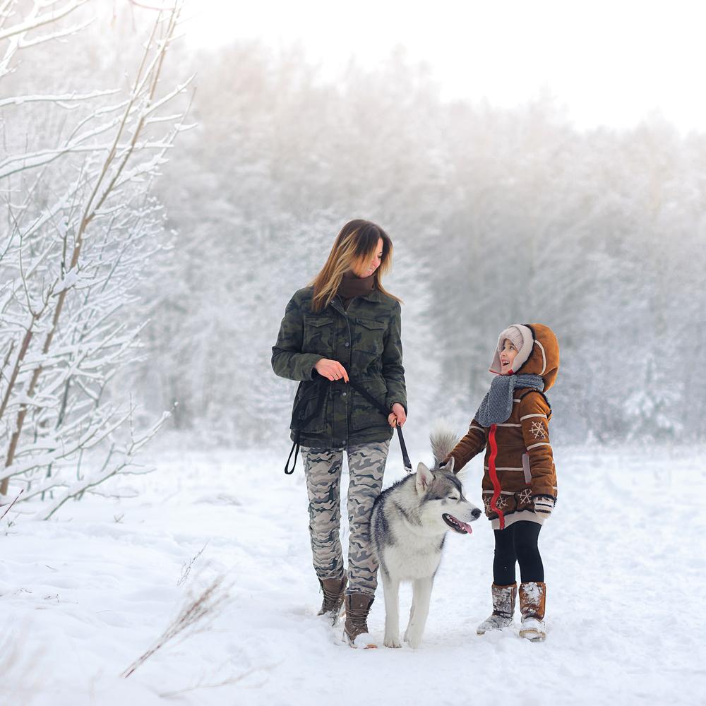 Холистичният подход към зимата