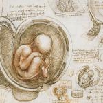 Лекция, филм и беседа за вътреутробния живот на бебето
