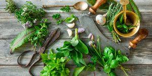 Вкусовете и храните от погледа на Аюрведа